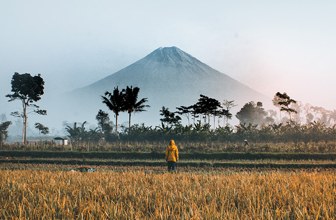 Person in a yellow coat standing in a field with a volcano in the background. Taken in Indonesia.